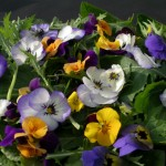 mixed violets on a salad